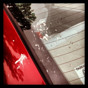 Instagrammed photo of bird poop on my car