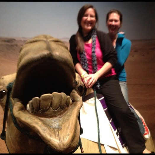 Fake camel photo bomb